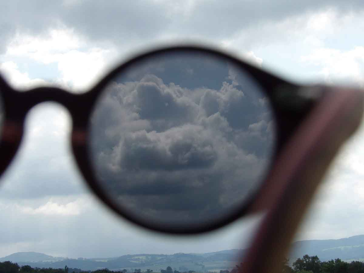 vue avec des lunettes de soleil polarisées en bois WL